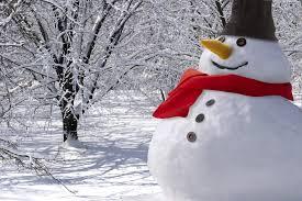 sneeuwpop website